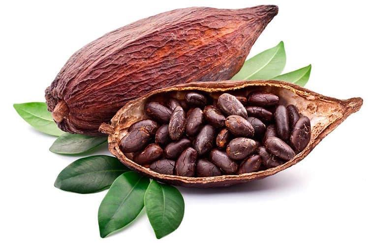 Какао бобы - супер-продукт натурального происхождения о пользе которого мало кто знает