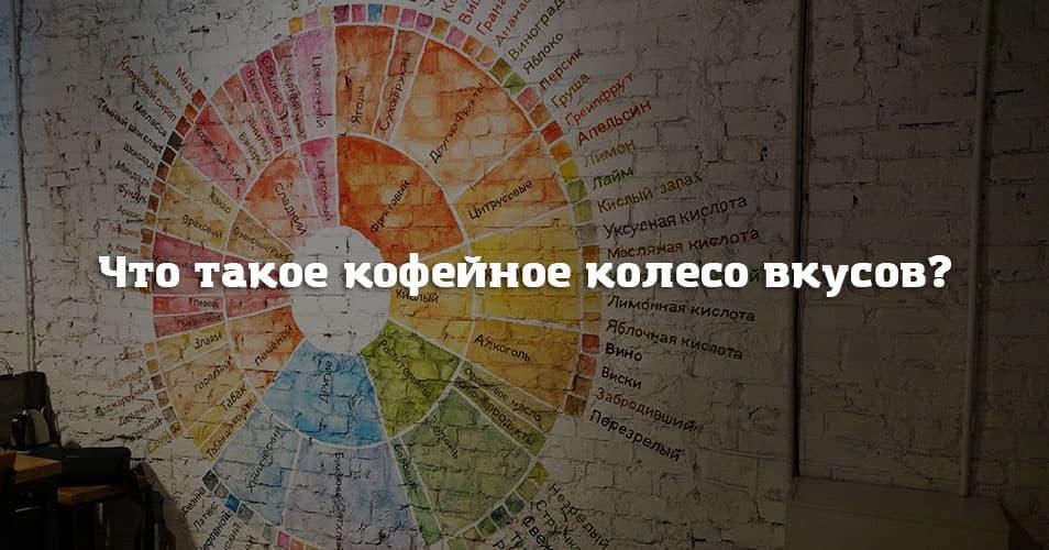 Что такое кофейное колесо вкусов?