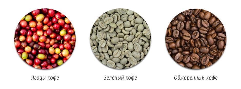 Малоизвестные факты о пользе свежеобжаренного кофе