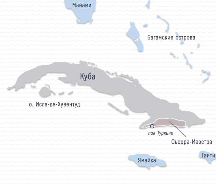 Заказать Свежеобжаренный кофе Табера Куба молотый Арабика 100%